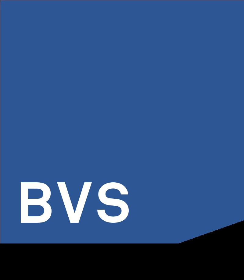 BVS Sociaal Metaal